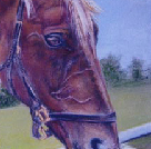 At the water trough horse portrait in pastels 16x20